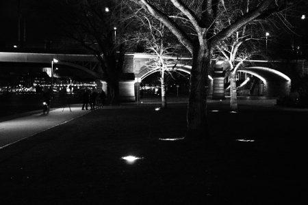 angeleuchteter Baum