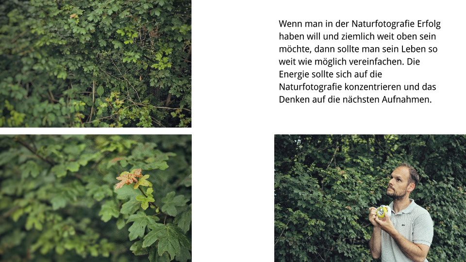 Naturfotografie Buchkonzept 03